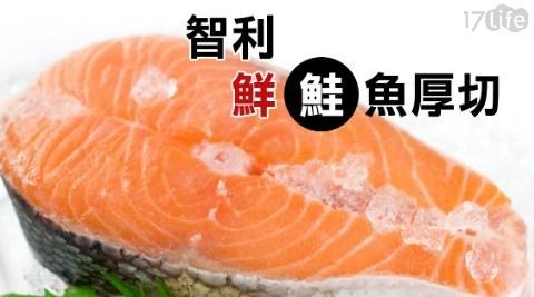 智利鮮鮭魚厚切/海鮮/鮭魚/智利/厚切