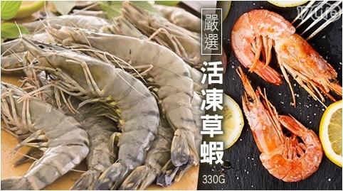 活凍草蝦/活凍/草蝦/新鮮/無腥味/彈牙/海鮮/生鮮