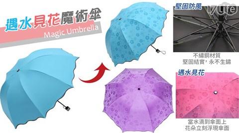 雨傘/遇水見花/魔術傘/傘/雨具/摺疊傘