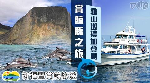宜蘭/頭城/新福豐36號賞鯨旅遊/新福豐36號賞鯨/賞鯨/龜山島/巡島/登島