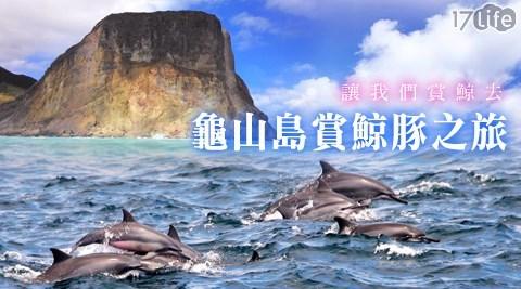宜蘭/新福豐36號賞鯨旅遊/頭城賞鯨/烏石港賞鯨/宜蘭賞鯨