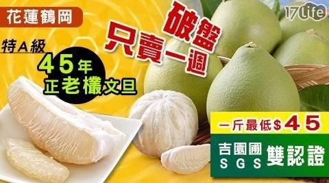【柚王】吉園圃SGS花蓮鶴岡45年老欉文旦禮盒(1箱),共