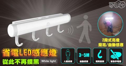 可吊掛LED感應燈/感應燈/LED/感應