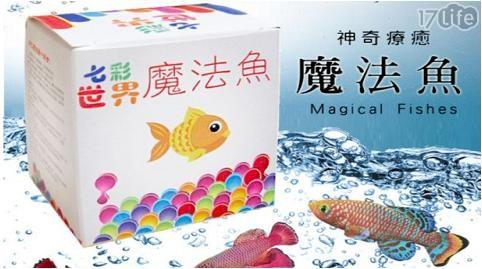 神奇/孵化/活魚/療癒/魔法魚/魚/魚卵