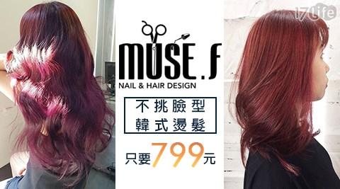muse f. hair salon/板橋府中站/韓式燙髮/頭皮養護/不分長短/799元/不挑臉型