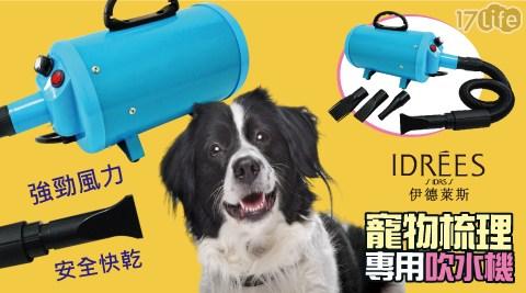 只要 2,389 元 (含運) 即可享有原價 9,800 元 專業寵物吹風機
