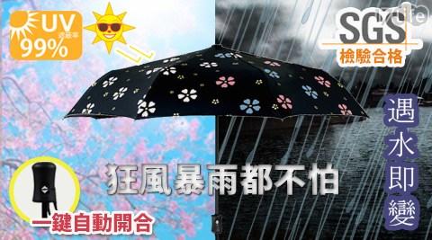 超大抗UV變色自動神傘/自動傘/雨傘/抗UV