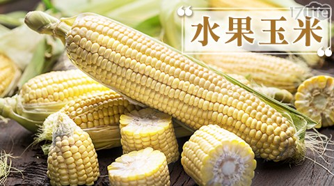 高甜度白珍珠水果玉米