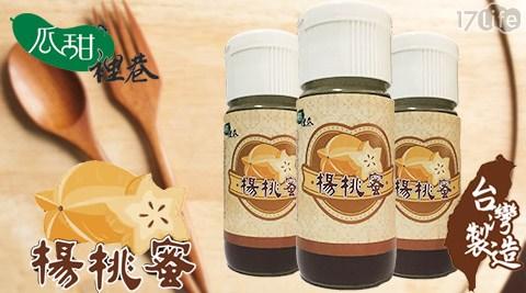 瓜甜裡巷/楊桃蜜/廣家味/楊桃/水果/沖泡/水果茶