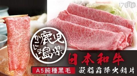 日本A5純種黑毛和牛霜降凝脂火鍋牛肉片(200±10%公克/盒)