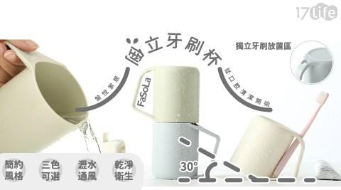 FaSoLa/牙刷/可瀝水/倒立/杯
