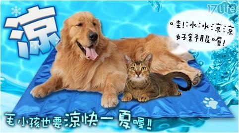 加大款/寵物/冰涼墊/日本/夏天/涼爽