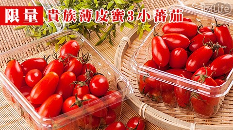 限量/貴族/薄皮/蜜3小/蕃茄/苗栗/聖女