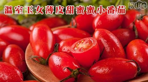 玉女/蕃茄/溫室/薄皮/蜜蕃茄/蜜3小/甜蜜蜜/聖女/水果