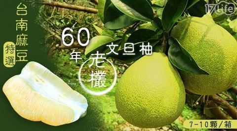 現貨!台南正麻豆60年正老欉文旦禮盒
