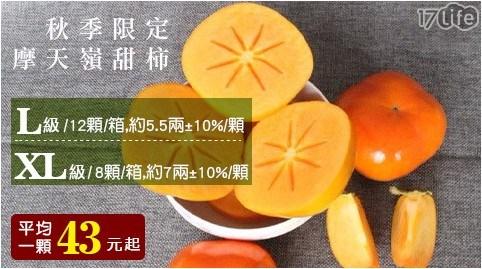 秋季限定/摩天嶺/甜柿/水果/柿子