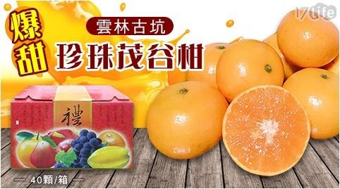 挑戰全網最低優惠,單顆10元有找!雲林特產-茂谷柑,高甜度,果皮亮麗,果肉呈深橙色,風味濃郁爽口!