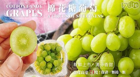水果/沙拉/葡萄/花青素/智利/進口/果汁/棉花糖