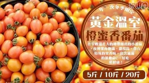 水果/消化/腸胃/溫室/黃金/橙蜜香/小番茄/番茄/蕃茄/小蕃茄/沙拉/點心/高雄/台灣/在地/美濃/澄蜜香