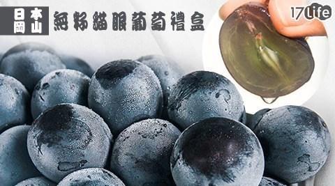 【獨家優惠】季節限定日本最珍貴的三大果物之一,甜度達16~21度,果粒巨大呈黑紫色, 無敵魅力無法擋