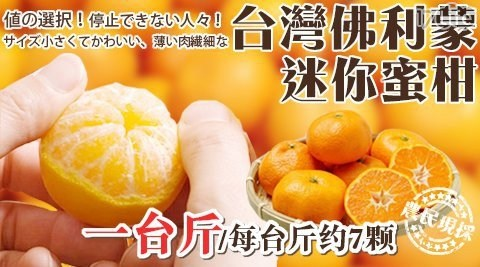 水果/柑橘/季節限定/陽光/佛利蒙/迷你蜜柑/橘子
