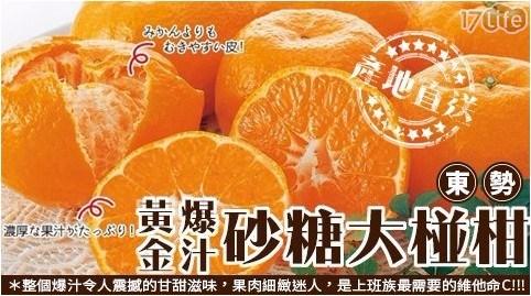 柑橘/橘子/維他命C/東勢/爆汁/砂糖/椪柑/水果/黃金/25A