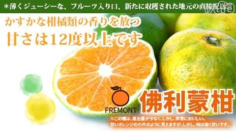水果/美白/維他命c/輕食/沙拉/果之蔬/佛利蒙/柑/情人橘/椪柑/果汁/高纖/當季