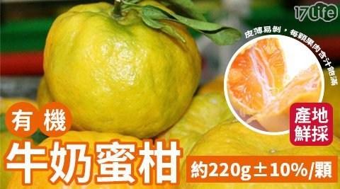 水果/高纖/沙拉/輕食/果汁/點心/維他命c/有機牛奶/蜜柑/椪柑/橘子/茂谷