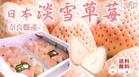 日本直送來台!產季產量有限,完售再等一年!汁多果肉飽滿如蜜桃,濃郁奶香襲捲味蕾,前所未有的夢幻滋味