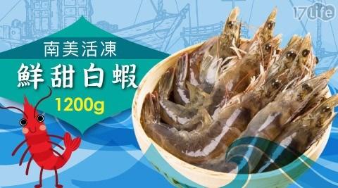 熊青/南美/活凍/新鮮/超大/甜白蝦/白蝦/海鮮/烤肉/蝦子/生鮮/中秋/賞月
