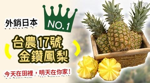 【買新鮮】台農17號金鑽鳳梨