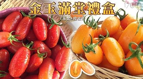 金玉滿堂小番茄禮盒(玉女+橙蜜)