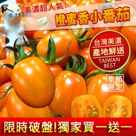 限時買一送一!宋媽媽-美濃橙蜜香小蕃茄