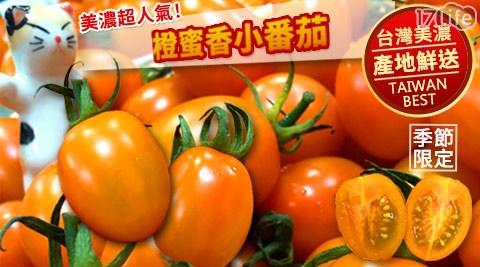 【預購】產地直送美濃橙蜜香小番茄禮盒