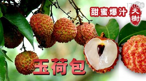 產地直送/大樹/玉荷包/荔枝/水果/季節水果/大樹甜蜜爆汁玉荷包/大樹 玉荷包