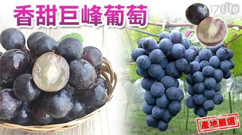 水果/伴手禮/禮盒/贈禮/葡萄/花青素/巨峰葡萄/彰化