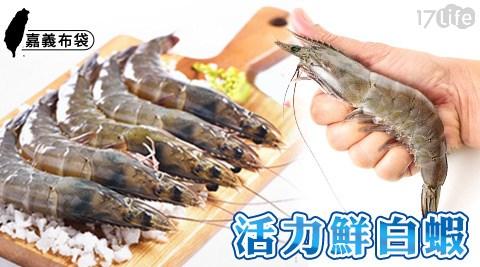 鮮蝦/蝦/白蝦/海鮮/嘉義布袋超活力鮮白蝦/嘉義/嘉義布袋/蛋白質/鋅/鐵/現撈