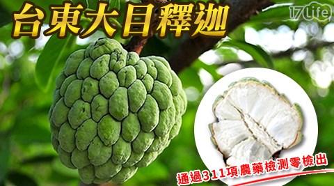 水果/果農/國產/台東大目釋迦/伴手禮/贈禮/季節水果