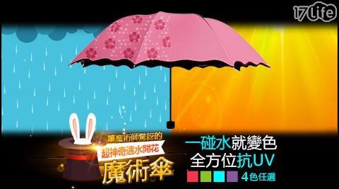 遇水開花折疊傘/折疊傘/抗UV/荷葉邊遇水開花折疊傘/抗UV荷葉邊遇水開花折疊傘/傘/雨具/雨傘