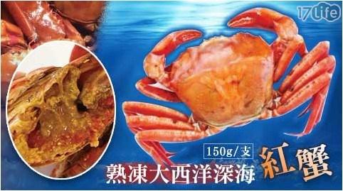 熟凍/大西洋/深海紅蟹/紅蟹/螃蟹/大閘蟹/年菜/海鮮/生鮮