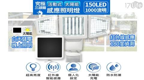 LED/太陽能/感應/探照燈/颱風