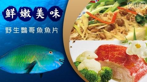 野生鸚哥魚魚片/魚片/魚/海鮮/火鍋/石斑/石斑魚/清蒸/野生鸚哥魚/鸚哥魚/生鮮