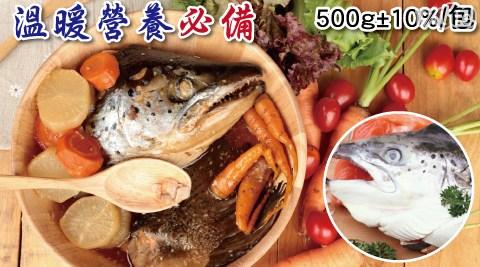 超大規格智利半切鮭魚頭