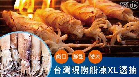 台灣現撈船凍XL特大透抽(2尾/包)