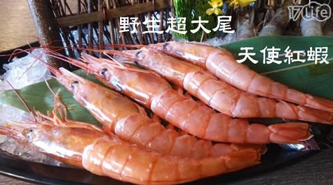 天使紅蝦/蝦子/海鮮/超大尾/大尾