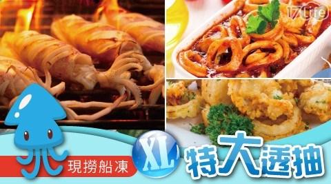 XL/特大/透抽/魷魚/花枝/海鮮/現撈/中秋/烤肉