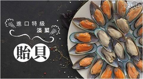 孔雀蛤/淡菜/貽貝/海鮮/牡蠣/九孔/中秋/烤肉/BBQ/淡水名產