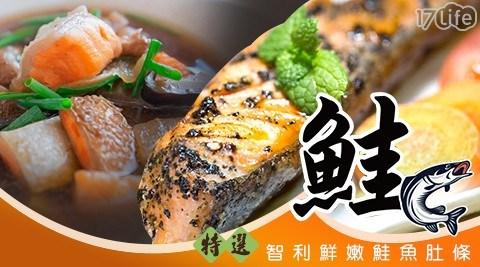 嚴選智利鮮嫩鮭魚肚條