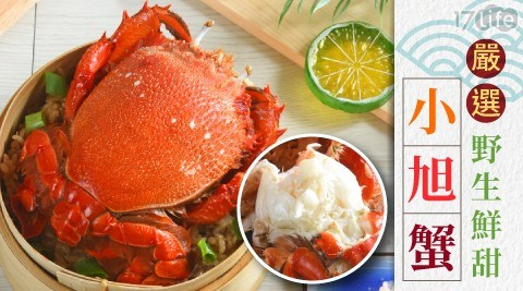 嚴選野生鮮甜小旭蟹/螃蟹/海鮮/蟹