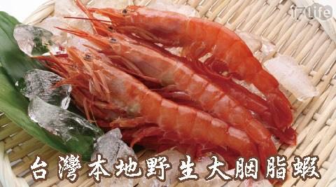 蝦/深海大胭脂蝦/海鮮